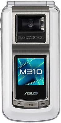 Asus M310